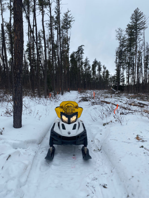 Boreal Trail Cleanup